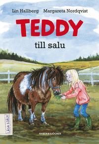 Teddy till salu (kartonnage)