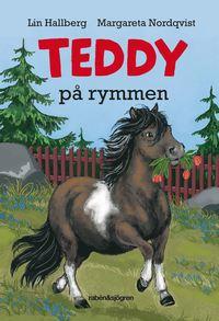 Teddy p� rymmen (kartonnage)