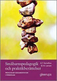Sm�barnspedagogik och praktikber�ttelser (h�ftad)