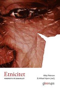 Etnicitet : Perspektiv p� samh�llet (e-bok)