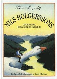Nils Holgerssons underbara resa genom Sverige (pocket)