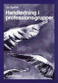 Handledning i professionsgrupper - Ett systemteoretiskt perspektiv p� handledning (h�ftad)
