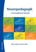 Neuropedagogik