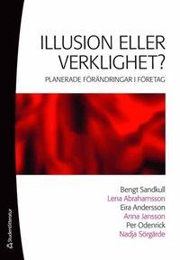 Illusion eller verklighet? (e-bok)