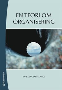 En teori om organisering (e-bok)