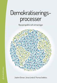 Demokratiseringsprocesser : nya perspektiv och utmaningar (h�ftad)