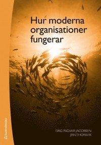 Hur moderna organisationer fungerar (h�ftad)