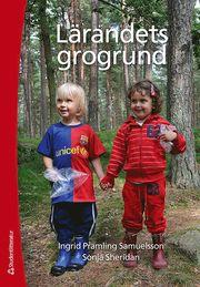 Lärandets grogrund : perspektiv och förhållningssätt i förskolans läroplan