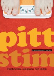 Pittstim : 15 berättelser om att vara kille