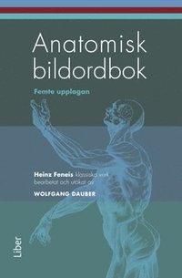Anatomisk bildordbok ()