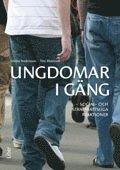 Ungdomar i gäng : social- och straffrättsliga reaktioner