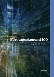 Företagsekonomi 100 Övningsbok