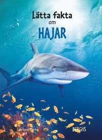 L�tta fakta om hajar (inbunden)