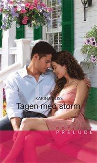 Tagen med storm (e-bok)
