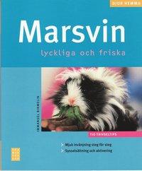 Marsvin (h�ftad)