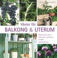 V�xter f�r balkong & uterum : blommande v�xter, gr�nsaker, sydfrukter, kryddor, inredningstips (h�ftad)