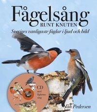 F�gels�ng runt knuten : Sveriges vanligaste f�glar i ljud och bild (inbunden)