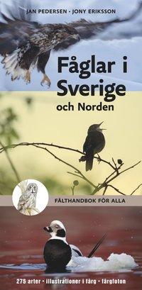 F�glar i Sverige och Norden : f�lthandbok f�r alla (h�ftad)