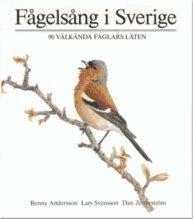 F�gels�ng i Sverige : 90 v�lk�nda f�glars l�ten (inbunden)
