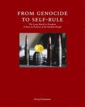 Från folkmord till självstyre : kurdernas långa väg till frihet