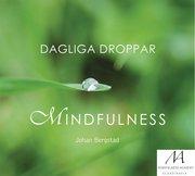 Dagliga droppar mindfulness