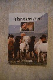 Islandshästen enligt Jóhann Fridgeirsson