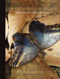 Ur regnskogens skugga : Daniel Rolander och resan till Surinam (inbunden)