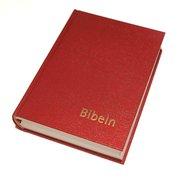 Bibeln konstskinn normal (inbunden)