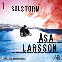 Solstorm (mp3-bok)