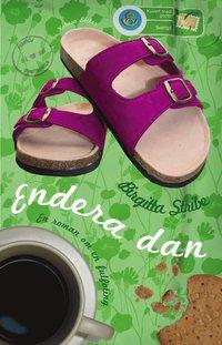 Endera dan : en roman om en fulfoting (inbunden)
