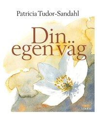 Din egen v�g (pocket)