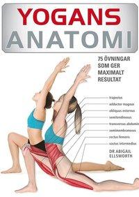 Yogans anatomi : 75 �vningar som ger maximalt resultat (h�ftad)