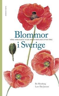 Blommor i Sverige : v�ra vanligaste vilda arter indelade efter f�rg (h�ftad)