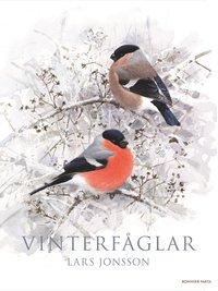 Vinterf�glar (inbunden)