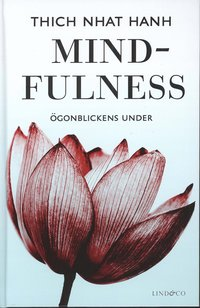 Mindfulness : �gonblickens under (kartonnage)