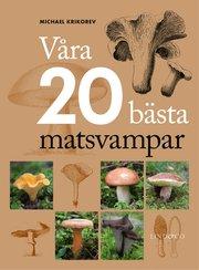 Våra 20 bästa matsvampar