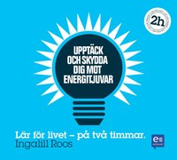 Uppt�ck och skydda dig mot energitjuvar : p� en timme (ljudbok)