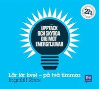 Uppt�ck och skydda dig mot energitjuvar: P� tv� timmar (pocket)