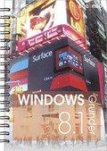 Windows 8.1 Grunder