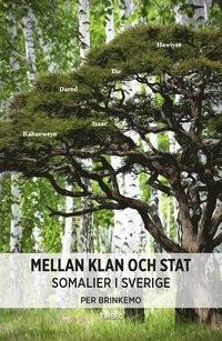 Mellan klan och stat : somalier i Sverige (inbunden)