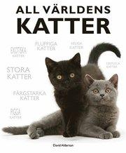 All världens katter