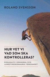 Hur vet vi vad som ska kontrolleras? : riskanalys i kommunal och landstingskommunal verksamhet (h�ftad)
