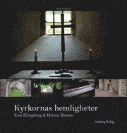 Kyrkornas hemligheter : södra Sverige