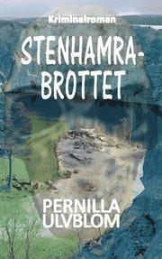 Stenhamrabrottet : kriminalroman