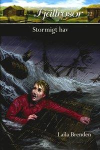 Stormigt hav (inbunden)