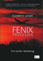 Fenixprocessen : finn styrka i förändring