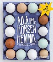 Alla hönsen hemma och färska ägg i köket