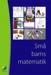 Sm� barns matematik : erfarenheter fr�n ett pilotprojekt med barn 1 - 5 �r och deras l�rare (h�ftad)