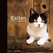 Katten : klok och egensinnig