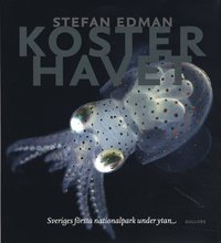 Kosterhavet : sveriges f�rsta nationalpark under ytan (inbunden)